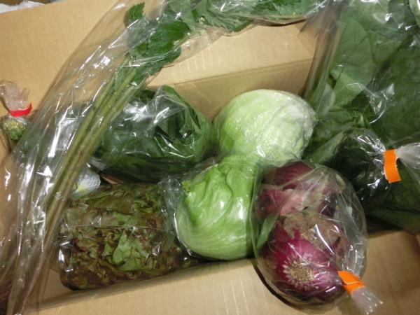 自然栽培の野菜_a0391592_21563335.jpg