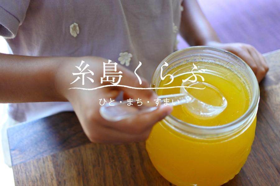 野草と柑橘の酵素、そして糸島の土地探し_e0029115_14414216.jpg