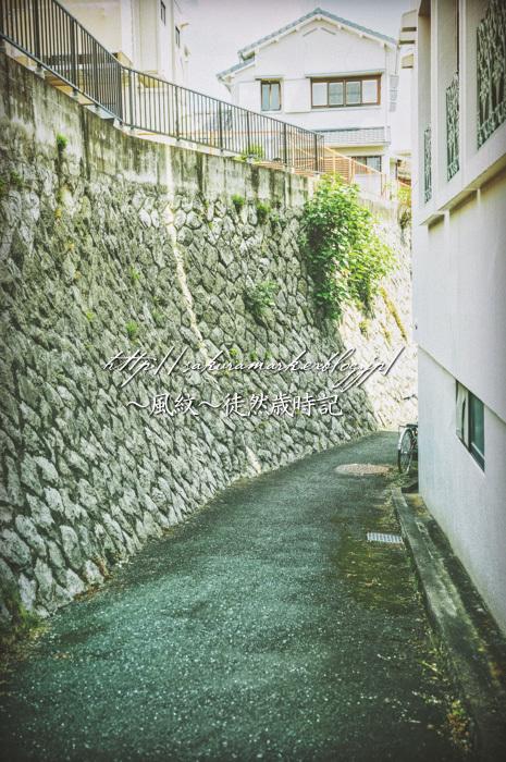 石垣のある路地裏風景。_f0235723_18031307.jpg