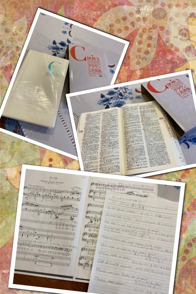 フランス語の辞書・・・☆_f0177125_16132122.jpeg