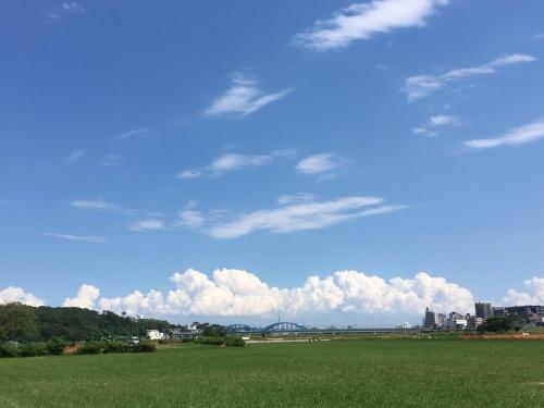 【号外】空を見上げる獅子太郎_f0203027_14223812.jpg