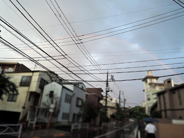 大雨のち_c0062832_16182351.jpg