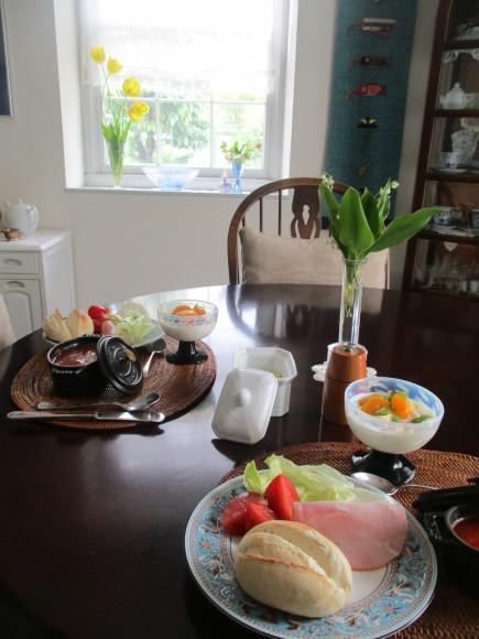 朝日を浴びて輝く黒花フウロソウ&トースター掃除_a0279743_11061835.jpg