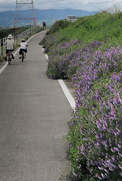 初めてのサイクリング_e0164563_16055909.jpg