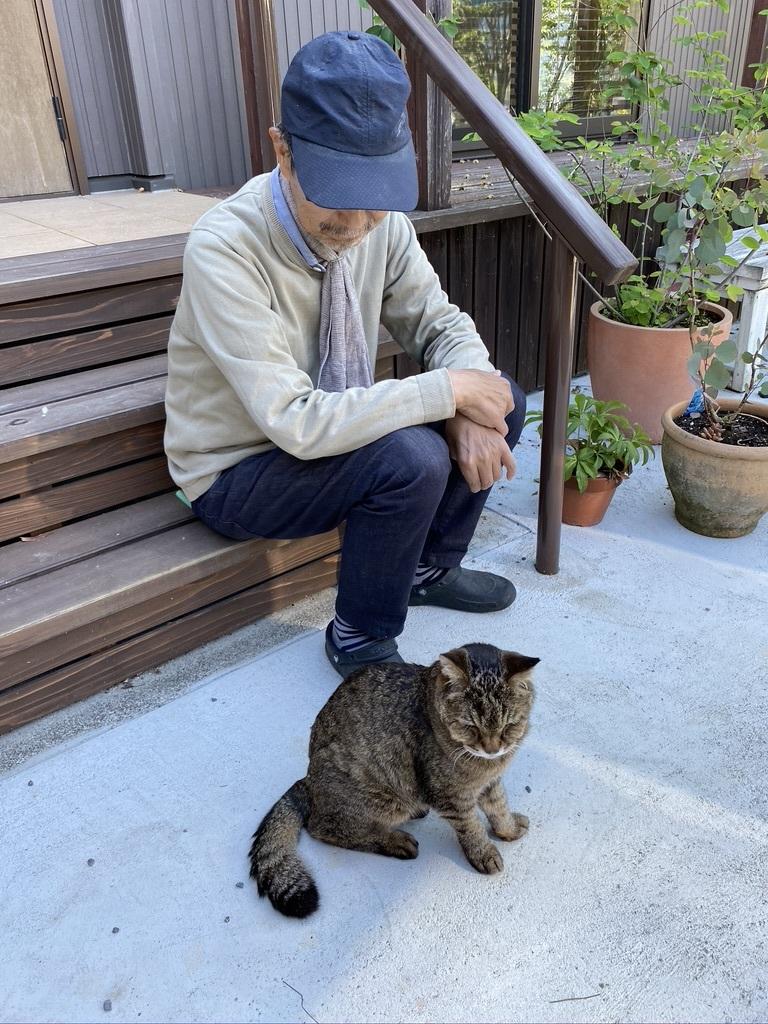 猫のウグちゃんの近況報告です。_c0334574_19415707.jpeg