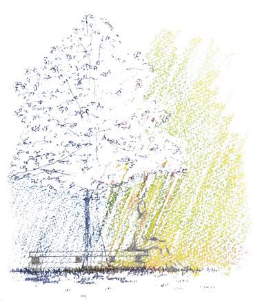 木漏れ日の下の効果_e0085278_19395258.jpg