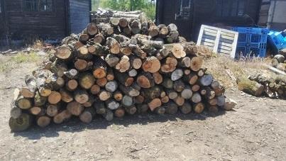 薪の準備がしてありました。_a0045293_15531224.jpg