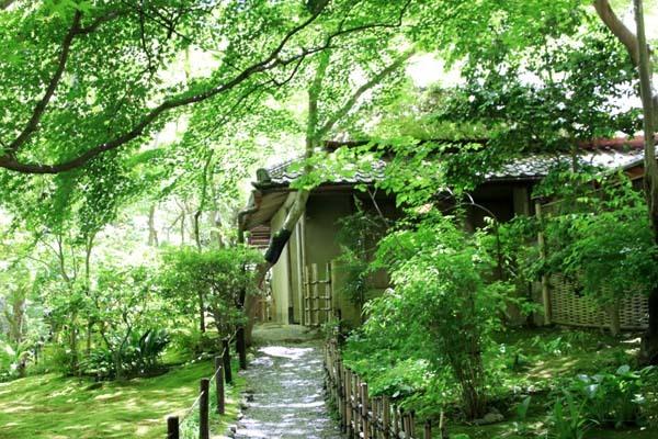 祇王寺 緑にひたる 嵯峨野散策_e0048413_20071998.jpg