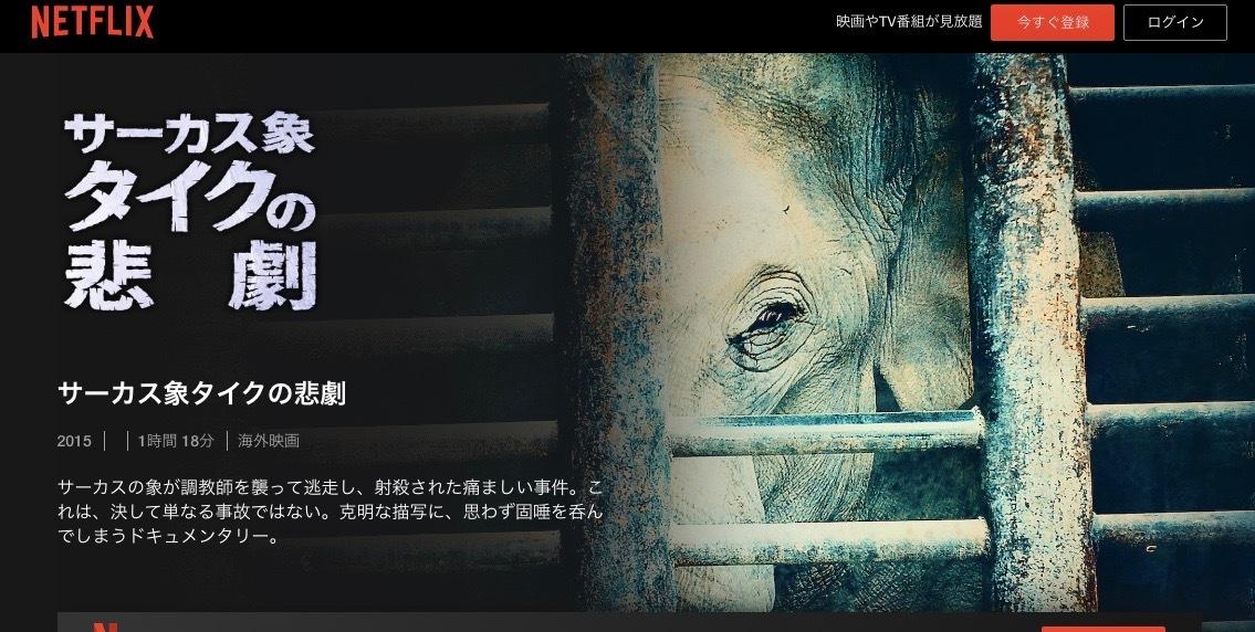 Netflixドキュメンタリー『サーカス象タイクの悲劇』 華やかなショーの裏側の過酷な環境_b0177242_10395628.jpg