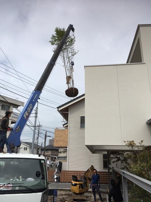 高関町の家_d0106648_16564413.jpg