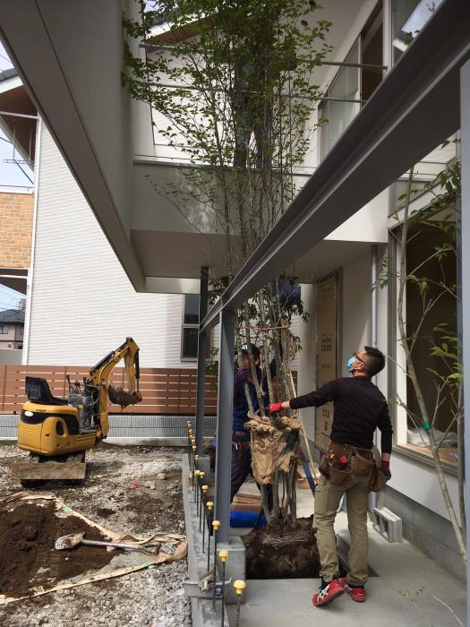 高関町の家_d0106648_16565334.jpg