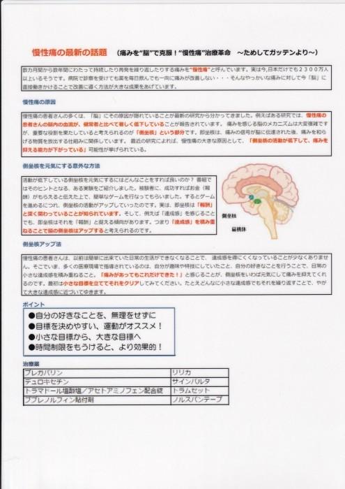 慢性痛=中枢性感作=神経可塑_b0052170_22564720.jpg