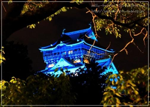 感謝のブルーライトアップ*大阪城_d0132371_18093047.jpg