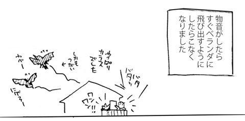 続・屋根からの物音_a0342172_23054536.jpg