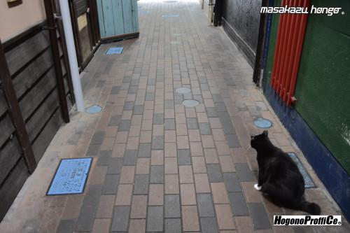 【おっ散歩カメラ放浪記:第7回】東一市場とコダクローム_b0008475_09571172.jpg