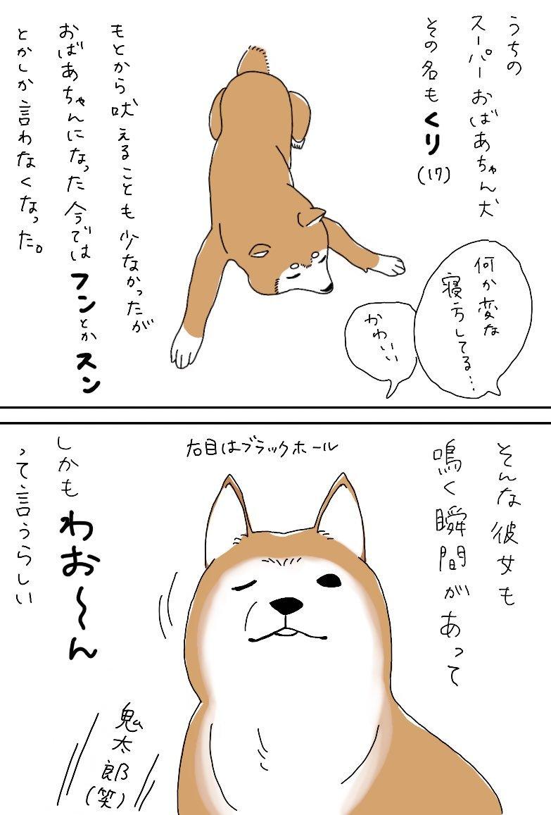 くりの話①_e0413199_21530370.jpg