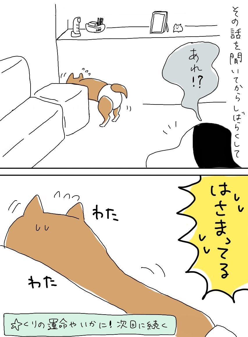 くりの話①_e0413199_21532269.jpg