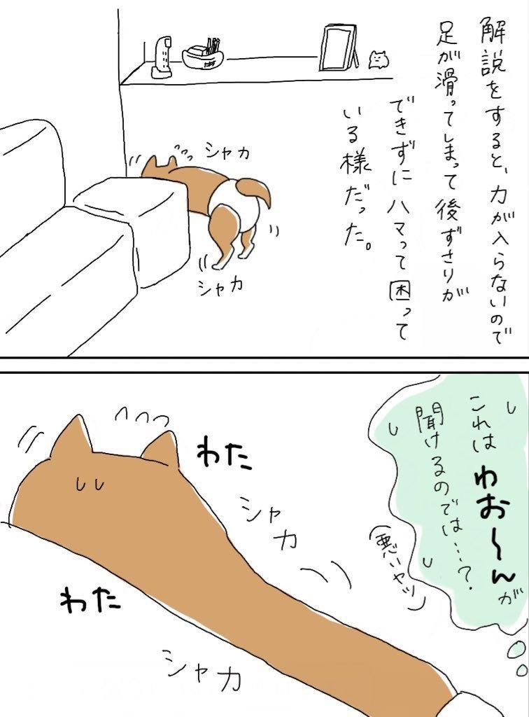 くりの話②_e0413199_21583834.jpg