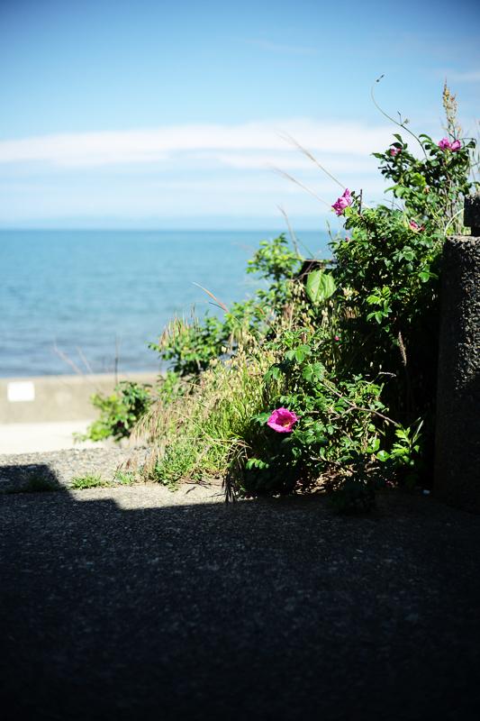 海の見える駐車場_e0344430_08583371.jpg