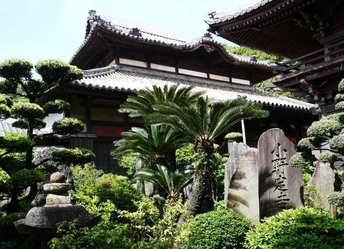 五百羅漢禅寺  2020-06-03 00:00     _b0093754_23143776.jpg