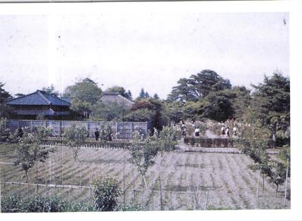 懐かしの写真2 昭和15年_f0168873_10451221.jpg