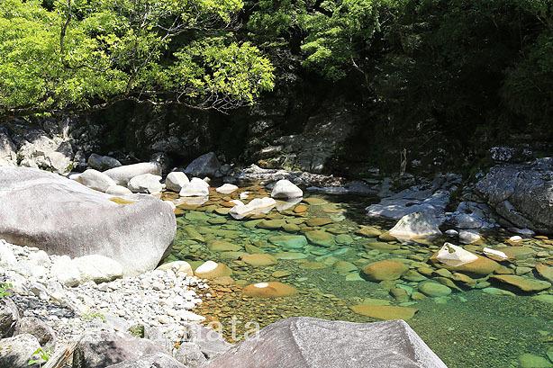 新緑の銚子川_b0186680_11443815.jpg