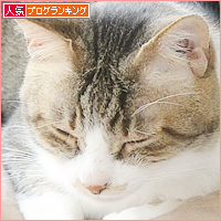 しあわせの重み_a0389088_09552004.jpg