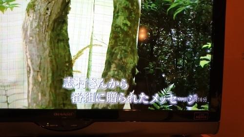 アートシーン・志村ふくみさん_e0292988_11441728.jpg