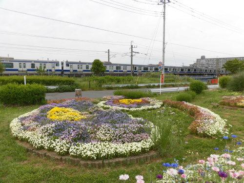 「花と風の丘」ある日の風景_d0257693_13190085.jpg