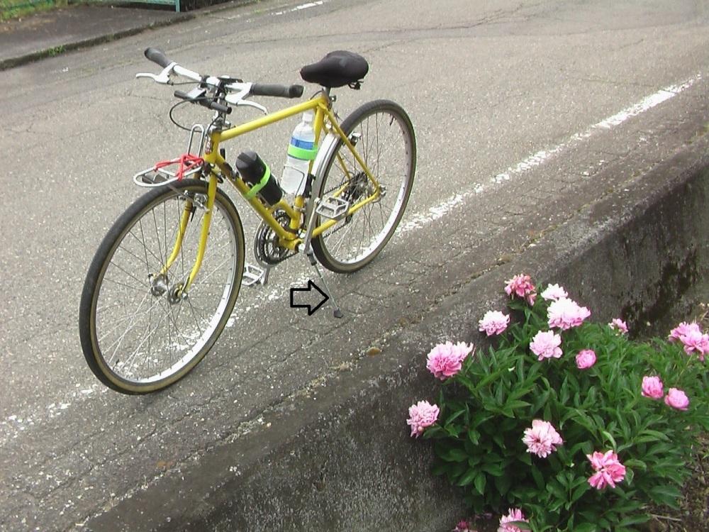 自転車 気楽に乗れるように なりました_c0335218_20543911.jpg