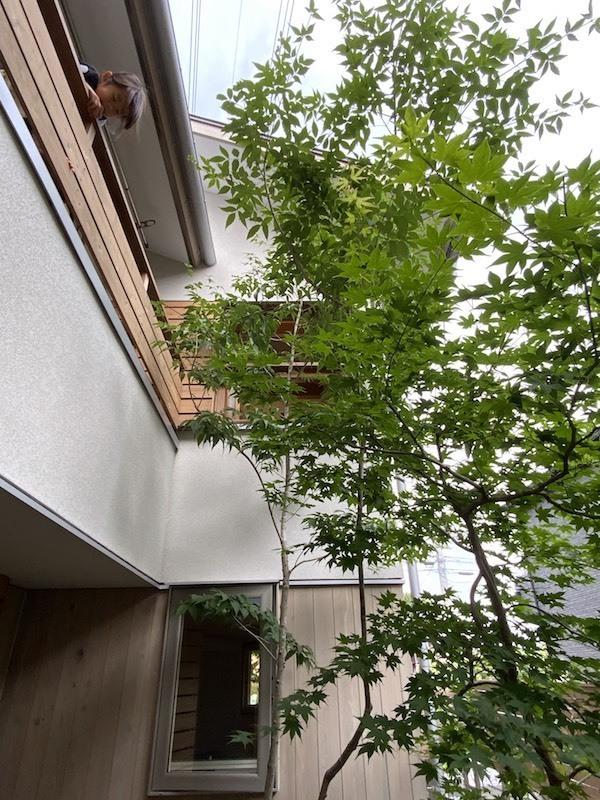 三鷹の家の取材_b0038919_18171501.jpg