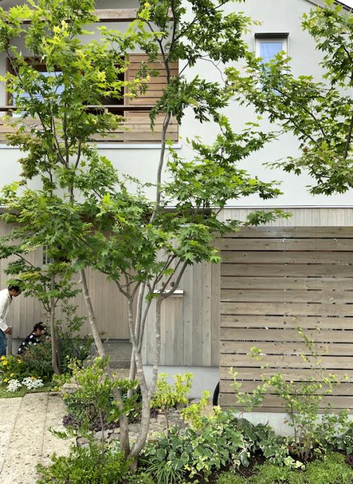三鷹の家の取材_b0038919_18234661.jpg