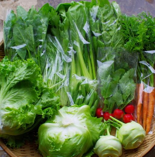 今週の野菜セット(6/2~6/6着)_c0110869_12483452.jpg