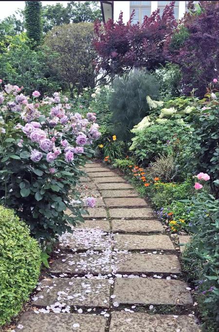 イングリッシュ(ローズ)の庭へ_c0134902_22150471.jpg