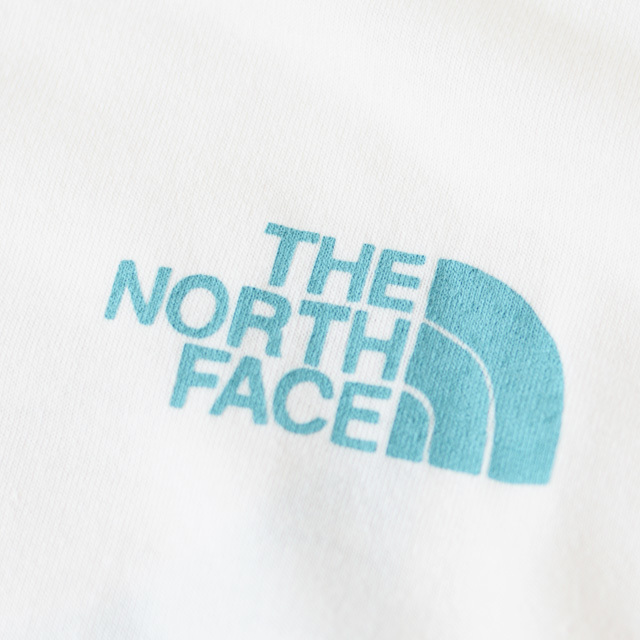 THE NORTH FACE [ザ ノースフェイス正規代理店] M S/S Graphic Camp Tee [NT32050] ショートスリーブグラフィックTシャツ・MEN\'S_f0051306_17315803.jpg