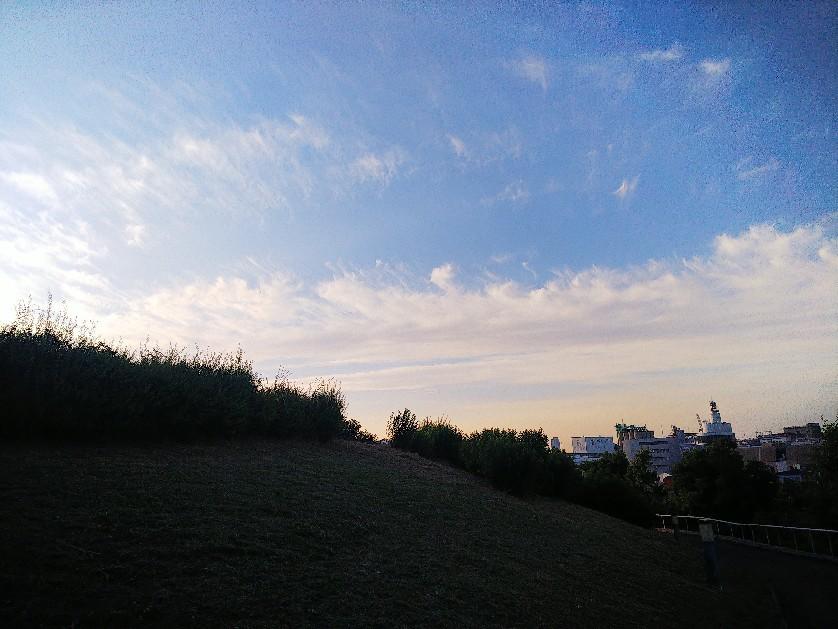 散歩_a0098418_22432195.jpg