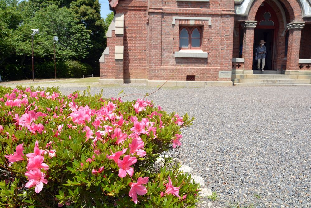 聖ヨハネ教会堂と残ったツツジの花_e0373930_21170015.jpg