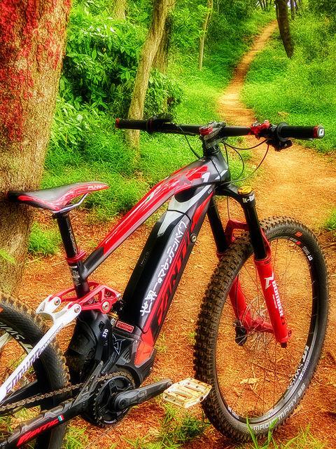 世界一のマウンテンバイク VII_b0049658_09071994.jpg