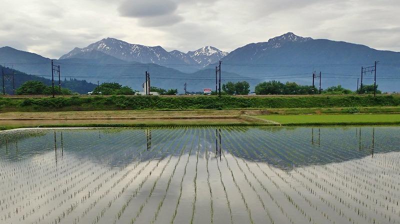 """兼業農家は\""""毎日の水見\""""が始まりました_c0336902_18472710.jpg"""