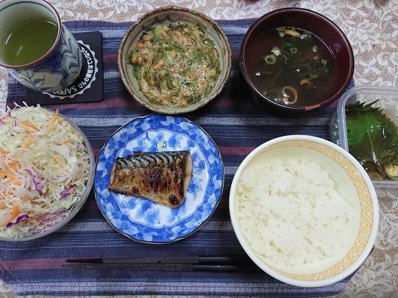 6/3 焼塩鯖納豆めかぶ大葉浅漬け定食@自宅_b0042308_12463616.jpg