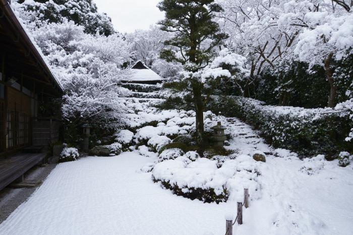 金福寺_e0177413_19030042.jpg