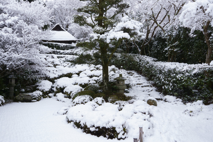 金福寺_e0177413_19031195.jpg