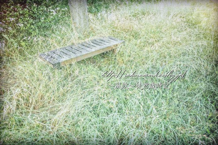 緑に覆われる公園。_f0235723_21075005.jpg