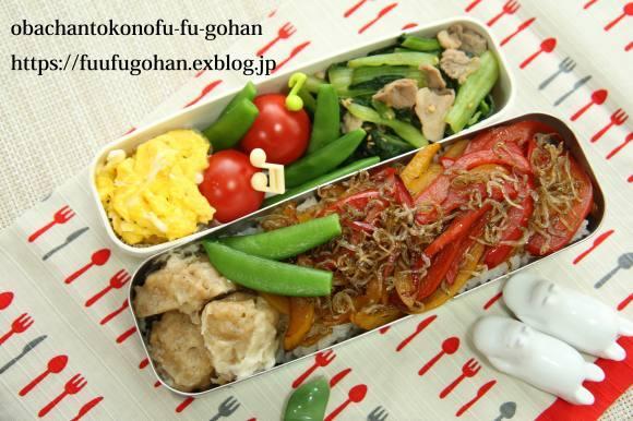 休日のおうちバルは、焼き肉パーティー&お野菜たっぷりのっけ弁_c0326245_11481232.jpg