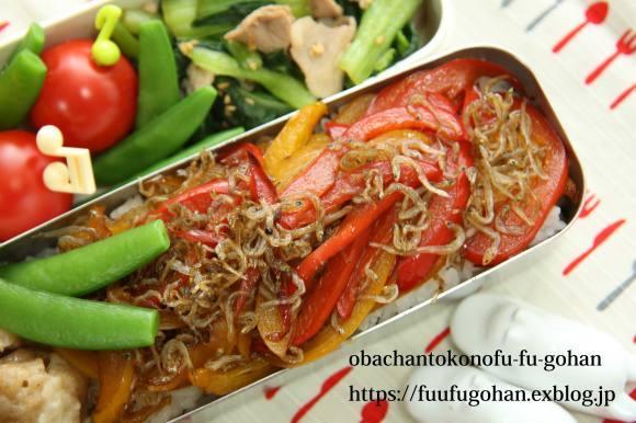 休日のおうちバルは、焼き肉パーティー&お野菜たっぷりのっけ弁_c0326245_11482416.jpg