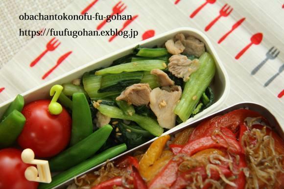 休日のおうちバルは、焼き肉パーティー&お野菜たっぷりのっけ弁_c0326245_11484160.jpg