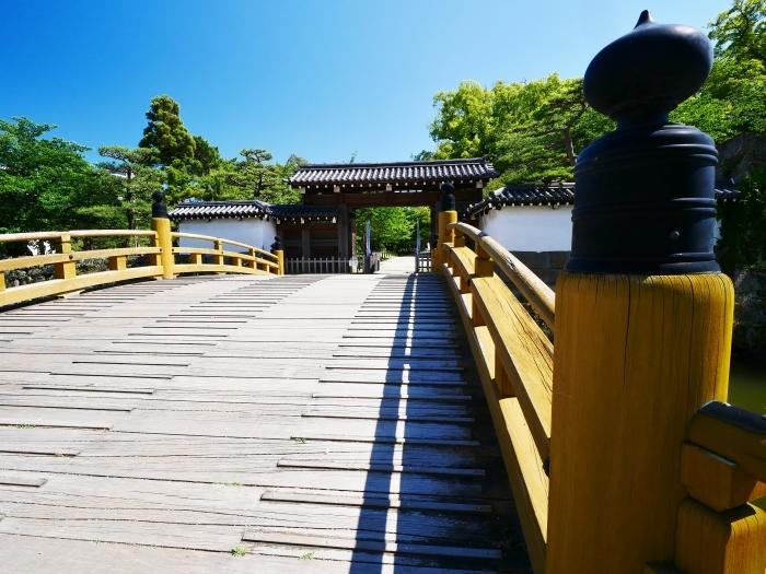 広角レンズで和歌山城公園へ  2020-06-07 00:00_b0093754_22382481.jpg