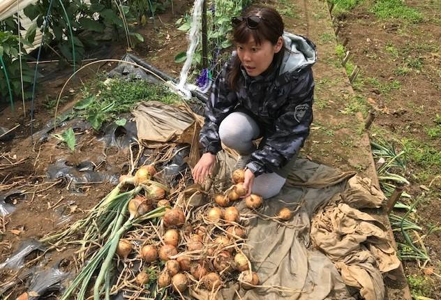 裏小町通りMagic hourにニンニク、ジャガイモなど提供6・3_c0014967_20211607.jpg