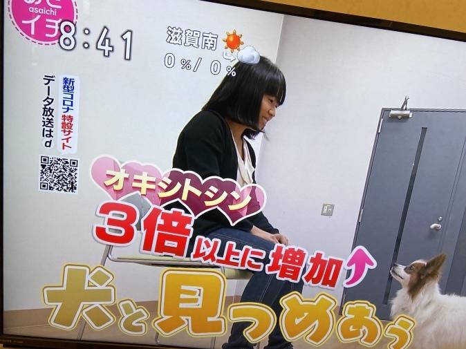NHK『あさイチ』でオキシトシン特集。山口創先生がご登場!_b0228973_22162581.jpeg