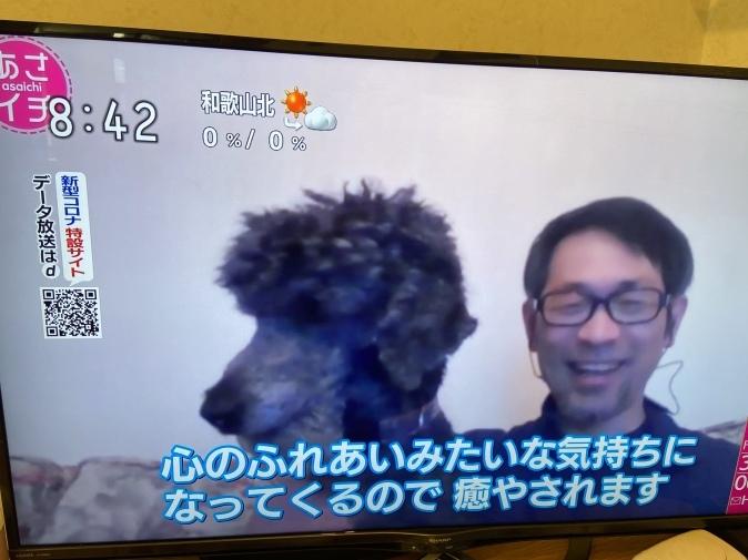 NHK『あさイチ』でオキシトシン特集。山口創先生がご登場!_b0228973_22164338.jpeg